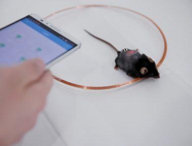 کنترل انسولین با اپ موبایل