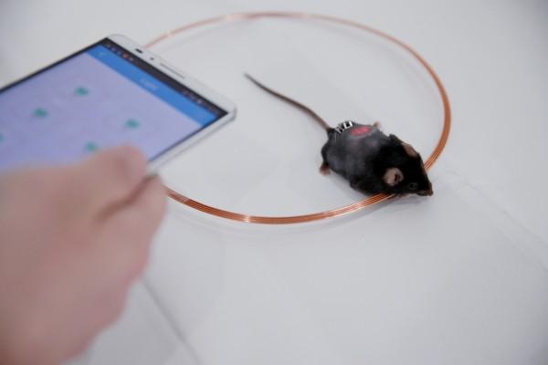 کنترل انسولین با اپلیکیشن موبایل